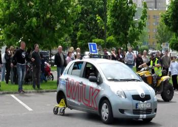 wilk-szkola-jazdy